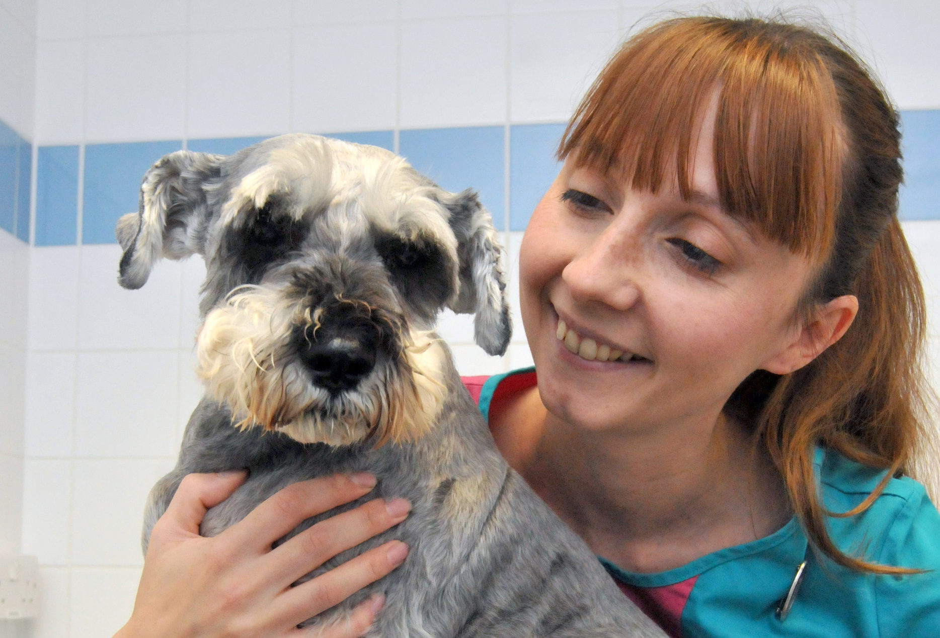 Suki with PDSA Vet Nurse Claire Urwin (Ian McClelland)