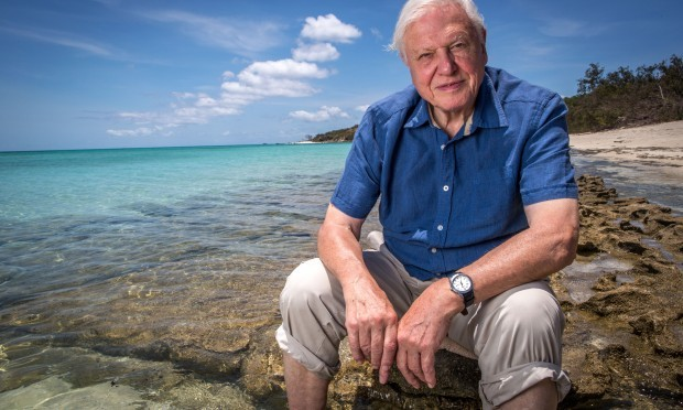 David Attenborough (BBC / Atlantic Productions)