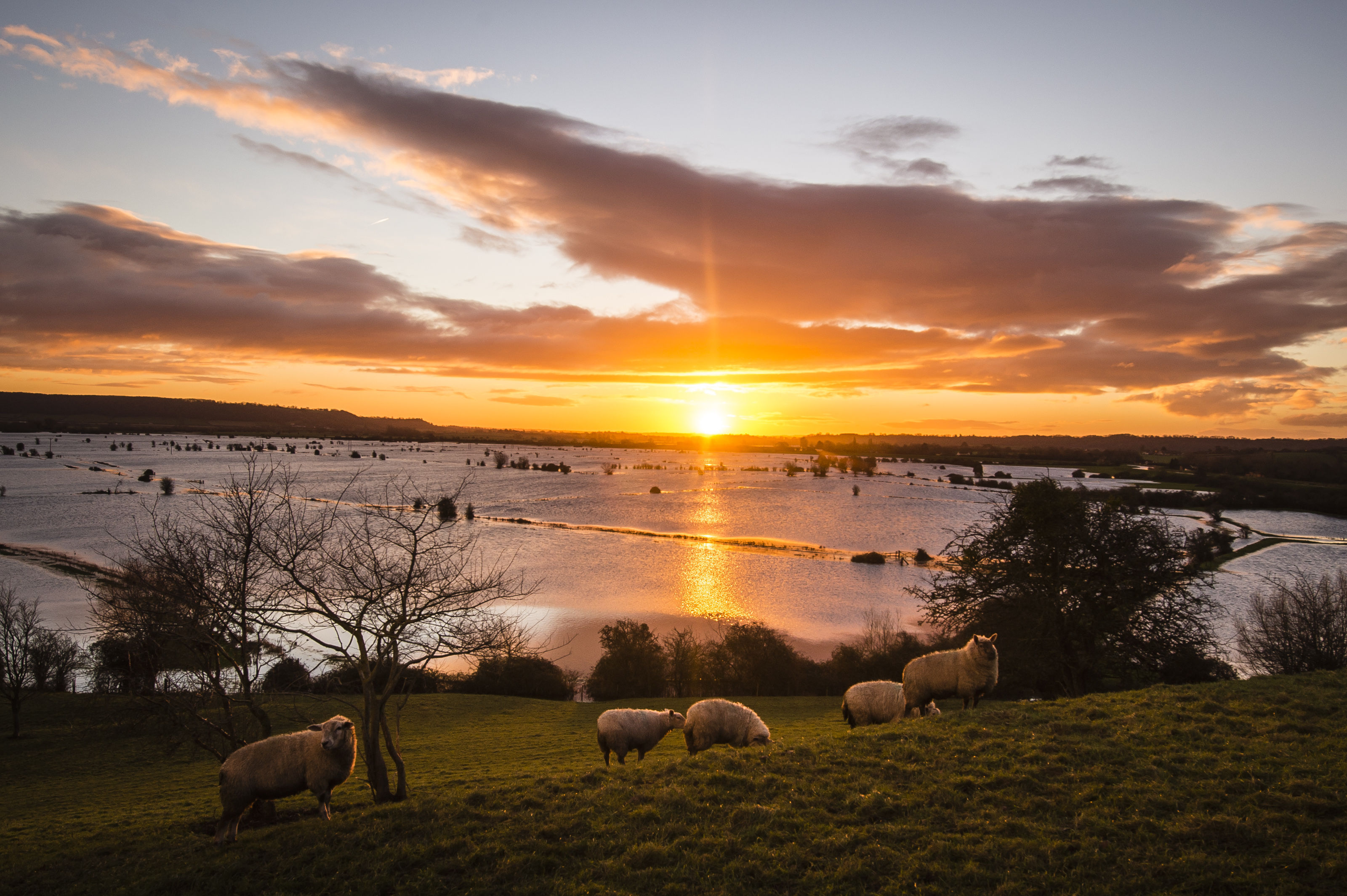 met office hottest year