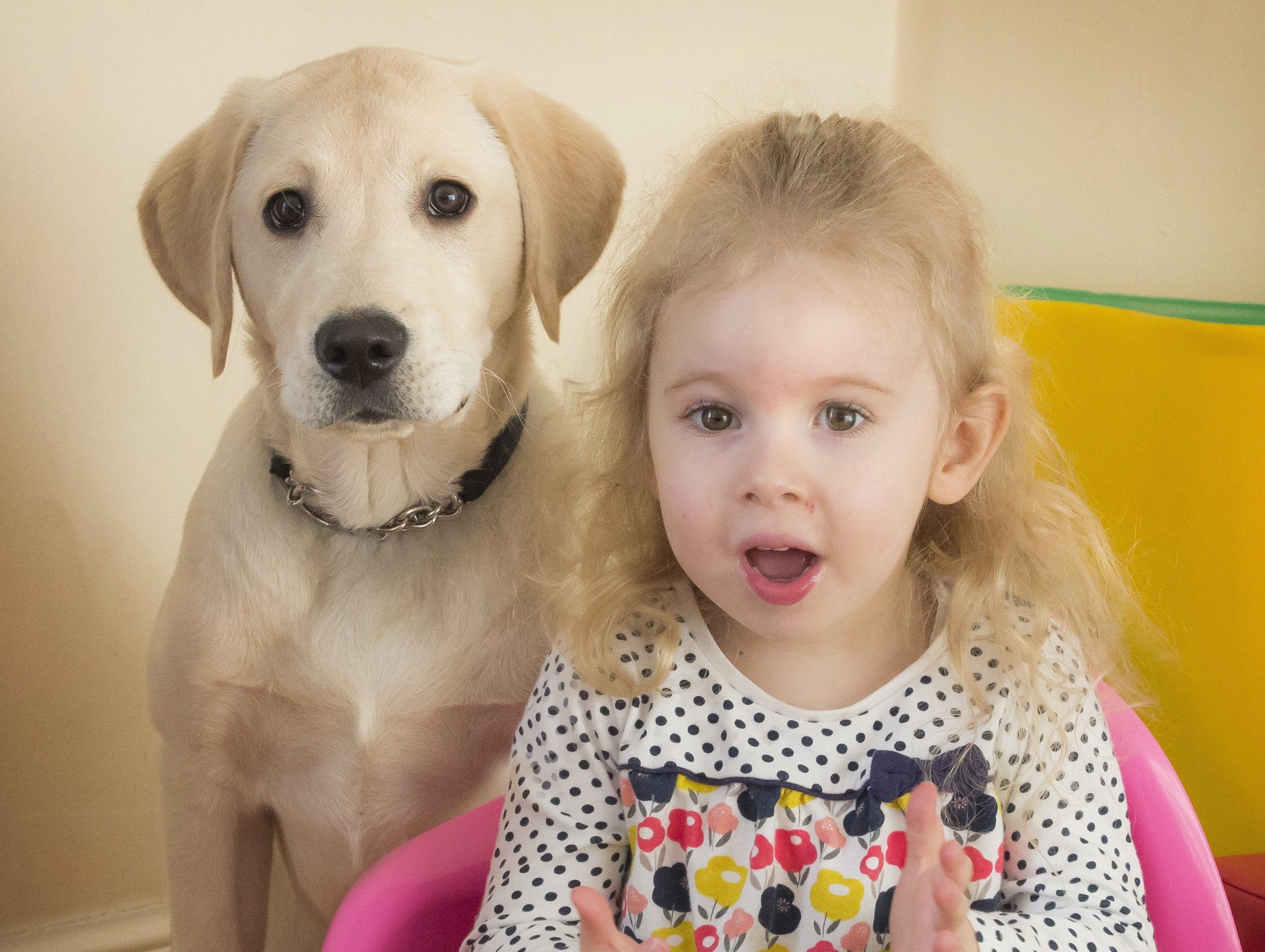 Alyssa and Harvey the dog at their home in Polmont (Alan Peebles)