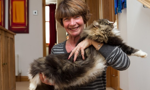 Mandy and her cat (Andrew Cawley / DC Thomson)