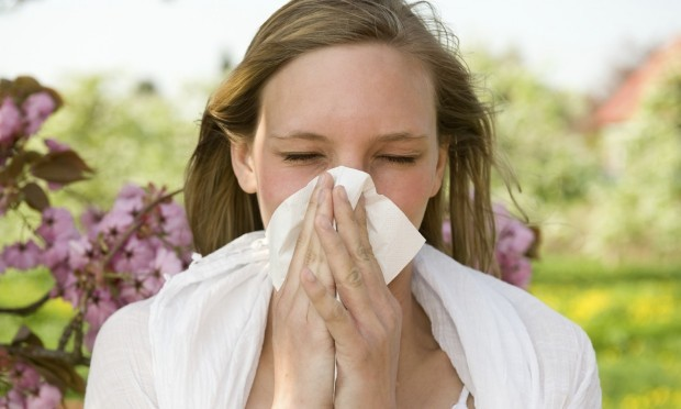 Good news for hay fever sufferers