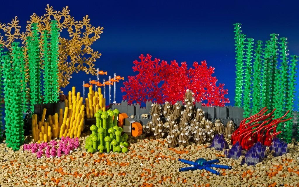 Great Barrier Reef model