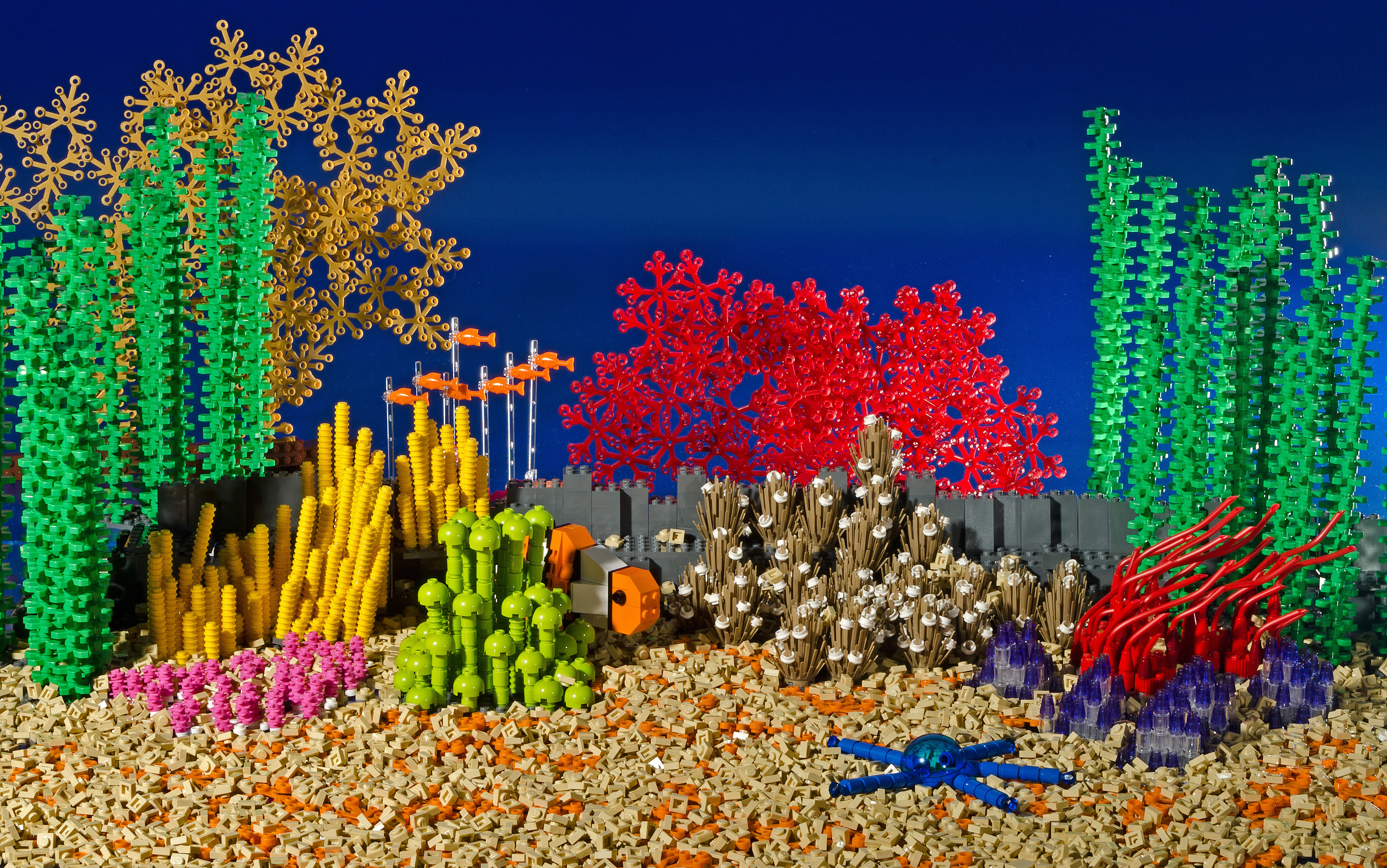 Great Barrier Reef model