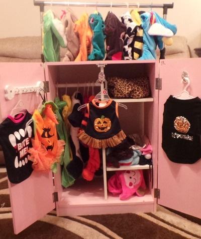 The Halloween wardrobe