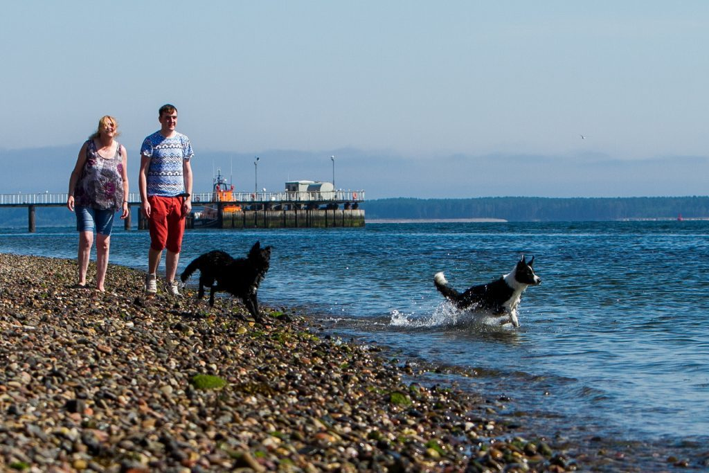 Stony Beach off Douglas Terrace, Broughty Ferry. Pictured, Elizabeth Dunlop and son Stephen Dunlop with dogs Yukee (left, aged 9 months) and Skye (right aged 3 years). (Steve MacDougall, Courier, DC Thomson)