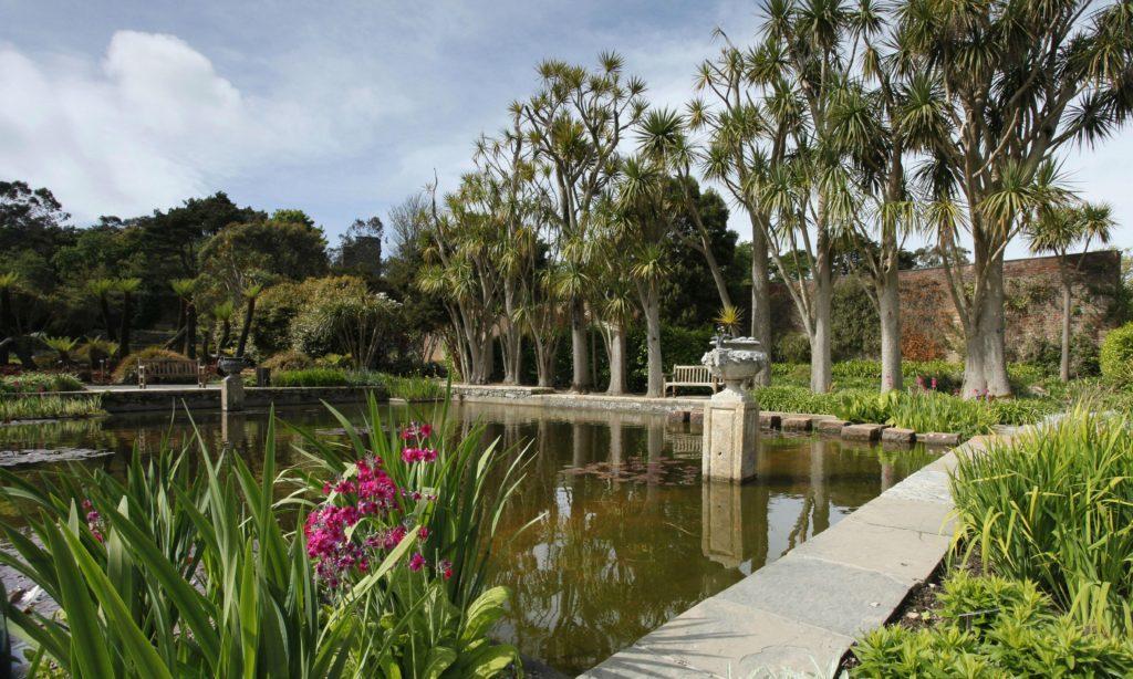 Logan-Botanic-Gardens-4000x2400_18135459
