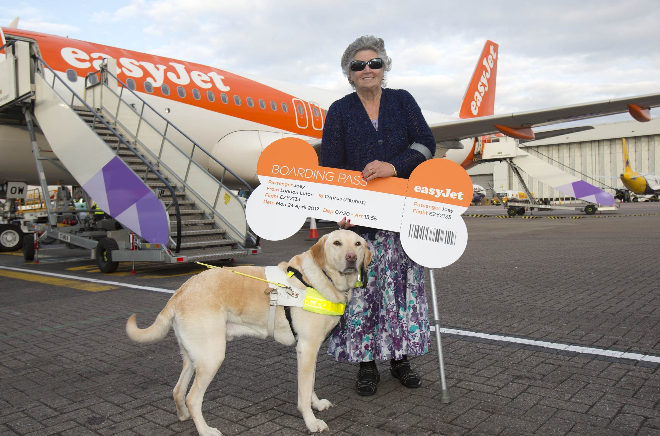Meet The Helpful Hound Who S Easyjet S Most Frequent Flying Dog