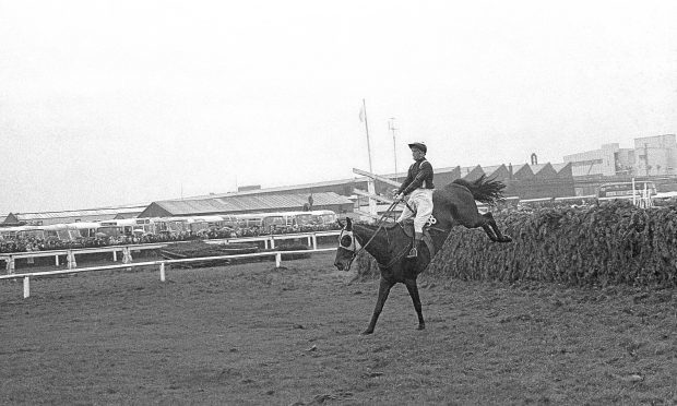 Foinavon, ridden by John Buckingham, lands confidently after sailing over the last fence in the Grand National, 1967 (PA Archive/PA Images)