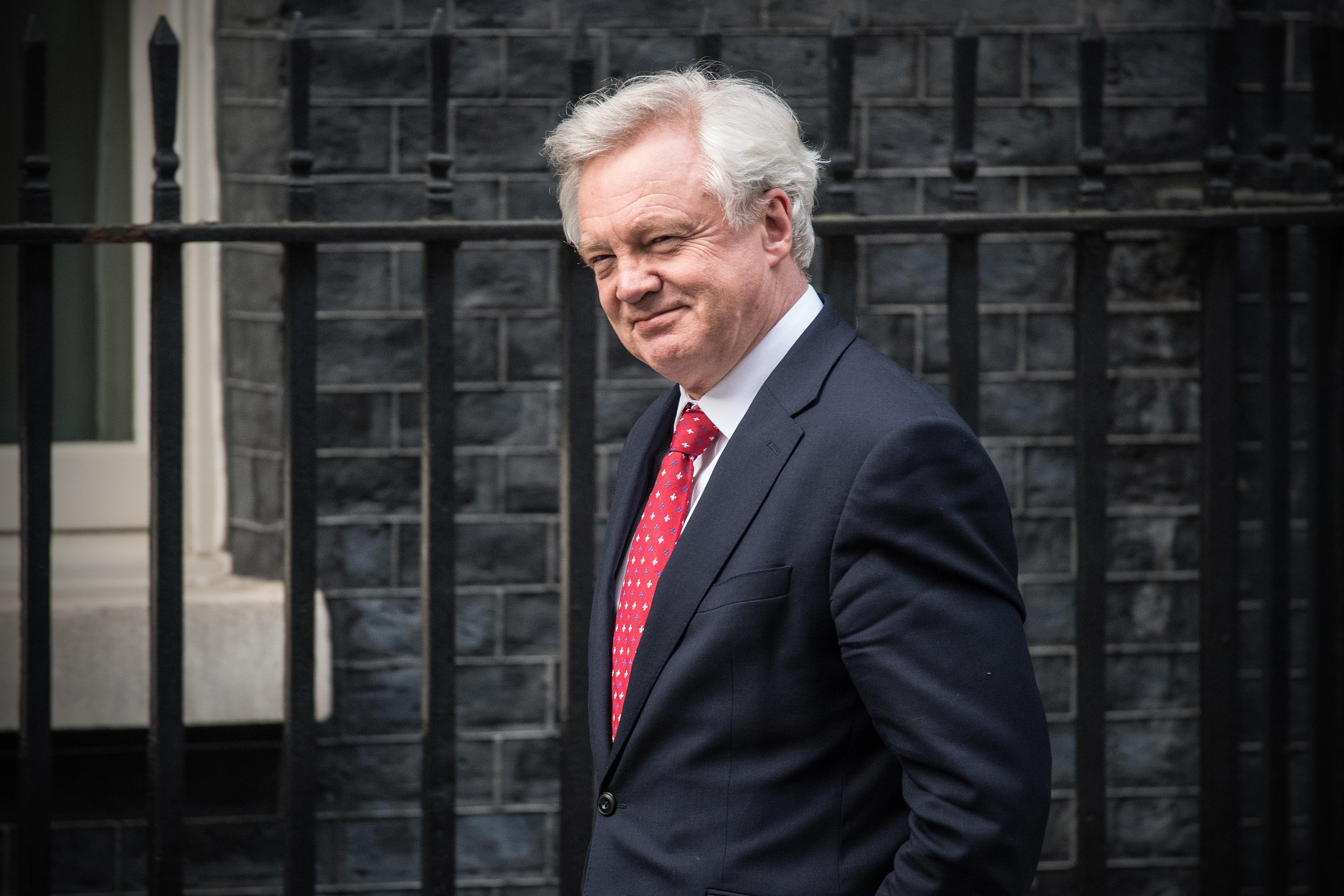 Brexit Secretary David Davis (Photo by Carl Court/Getty Images)