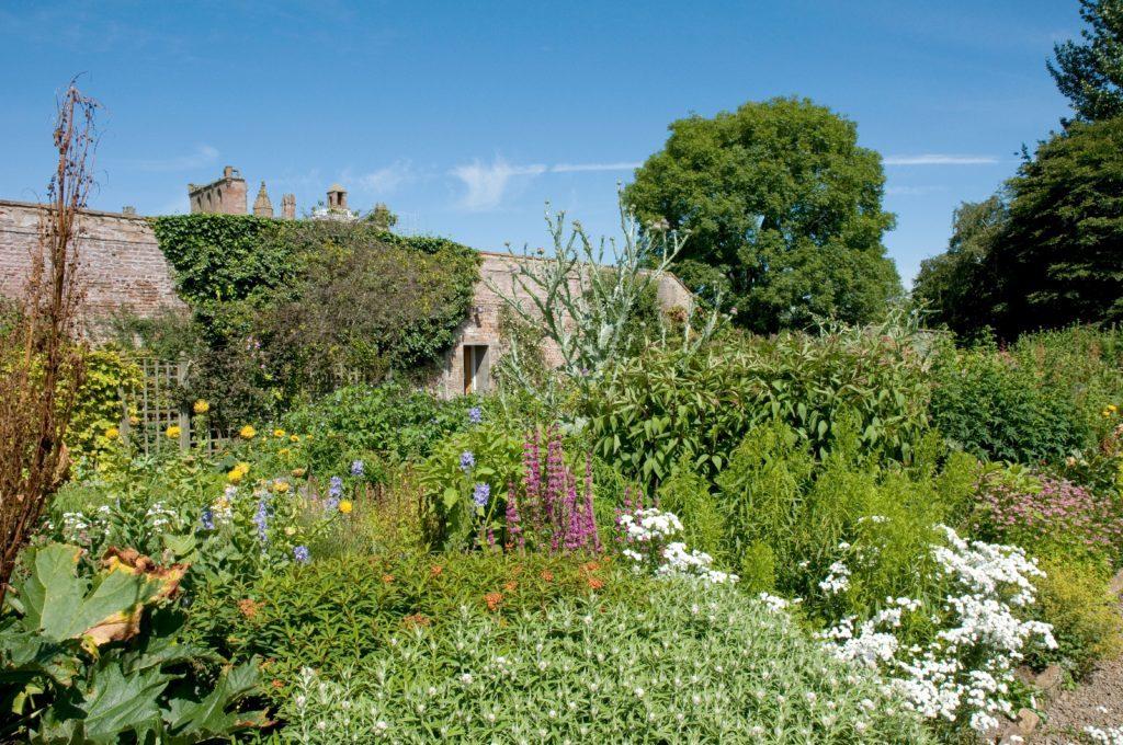 Flowers in the walled garden Priorwood Melrose Scottish Borders Scotland