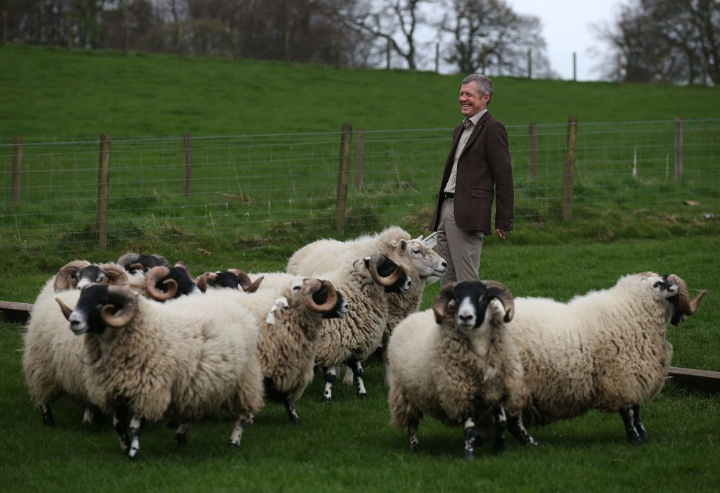 Scottish Liberal Democrat leader Willie Rennie is shown rams during a visit to Mill House farm in Kelty, Fife, as he campaigned in the Scottish local elections. PRESS ASSOCIATION Photo. Picture date: Friday April 21, 2017. Photo credit should read: Andrew Milligan/PA Wire