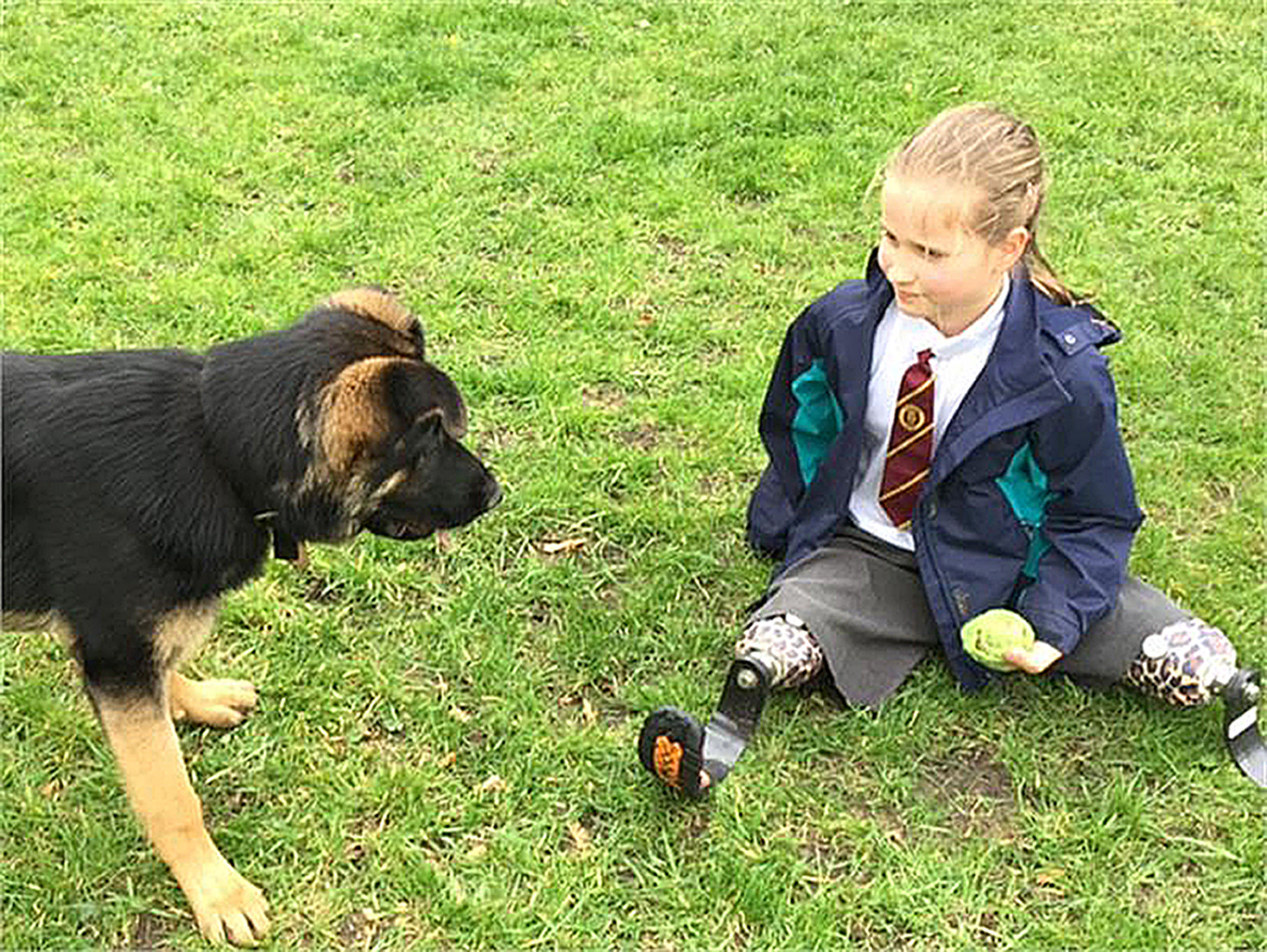Marina, 8, from Devon, with trainee police dog Tag, who is eight months old. (Devon and Cornwall Police/PA Wire)