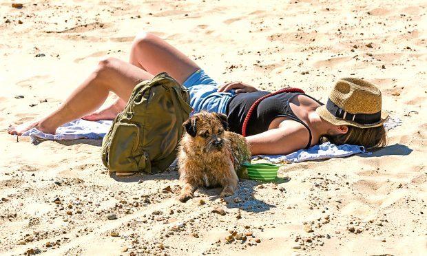 Sunshine on the beach (Carolyn Jenkins/Alamy)