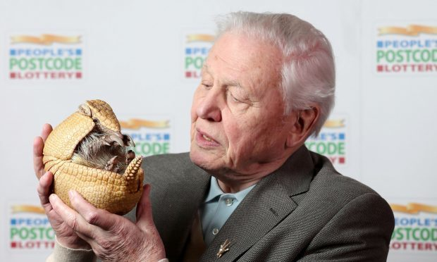 Sir David Attenborough (Jane Barlow/PA)
