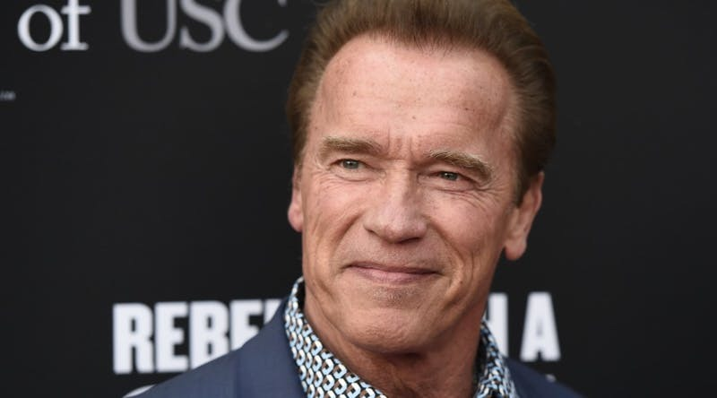 Arnold Schwarzenegger Schools Trump On How To Respond To Nazis