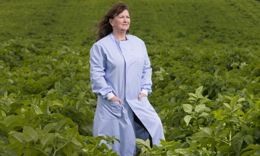 Forensics Officer Lorna Dawson at Knockquarn Farm potato field (Ross Johnston/Newsline Media)