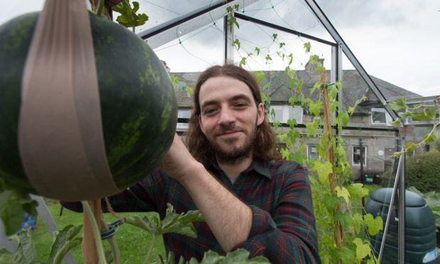Who would have thought that Peterculter was a tropical paradise. Ford Yule 29, from Peterculter, Aberdeenshire, is taking the horticultural world by storm. (Ross Johnston/Newsline Media)