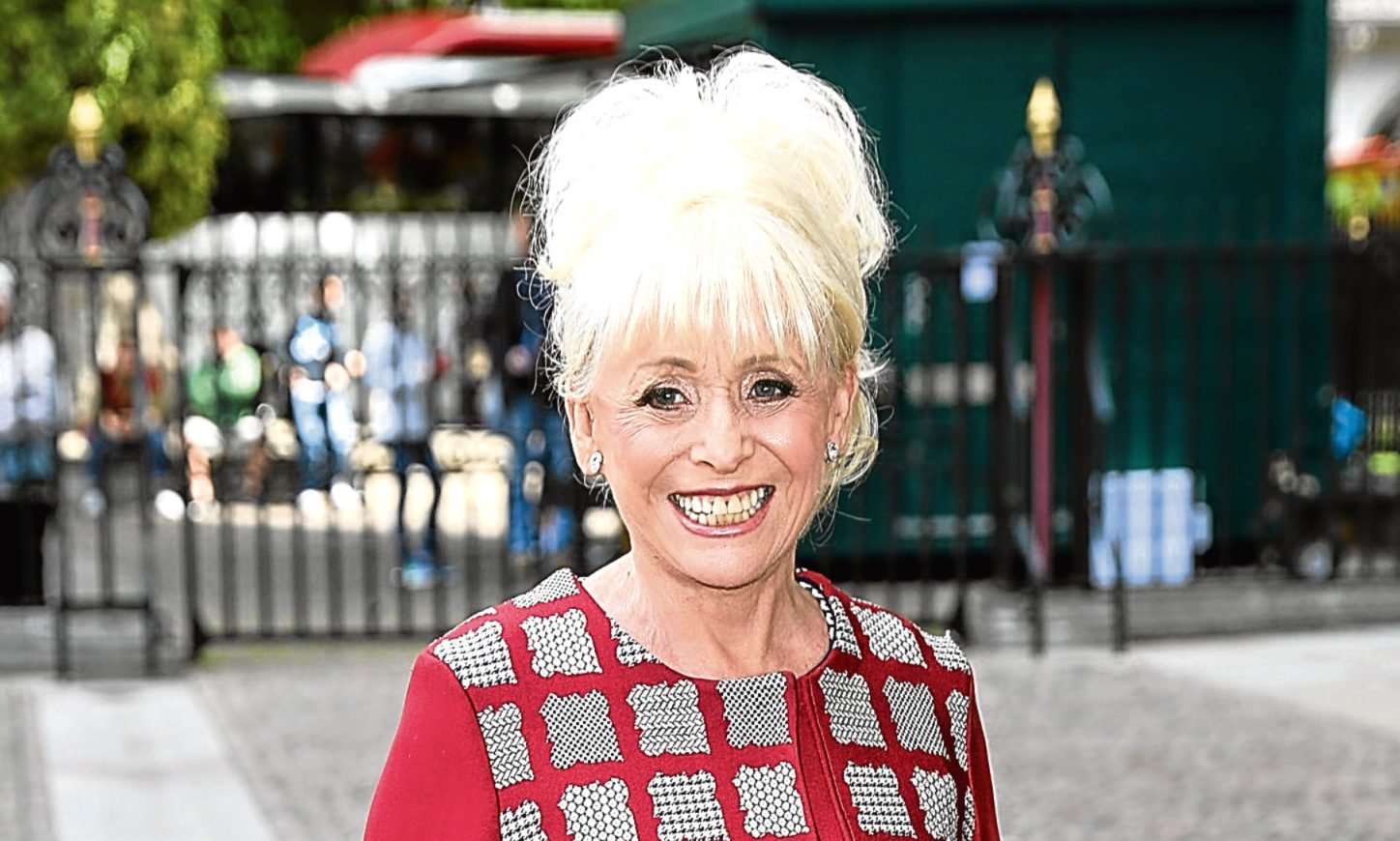 Dame Barbara Windsor (Tim P. Whitby/Getty Images)