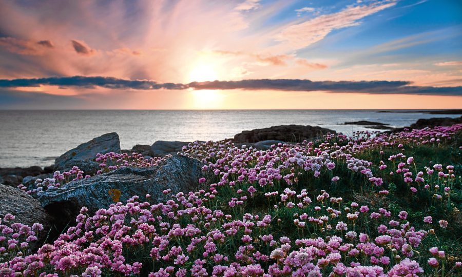 Colorful sunset over the coast of Barra, Outer Hebrides of Scotland (Getty Images)