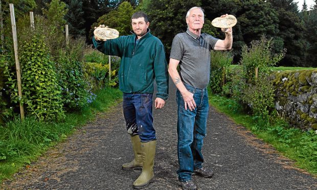 Ionel Obreja and Mick Hardy, who found a fossil of a fish in a garden they were working in (Andrew Cawley / DC Thomson)