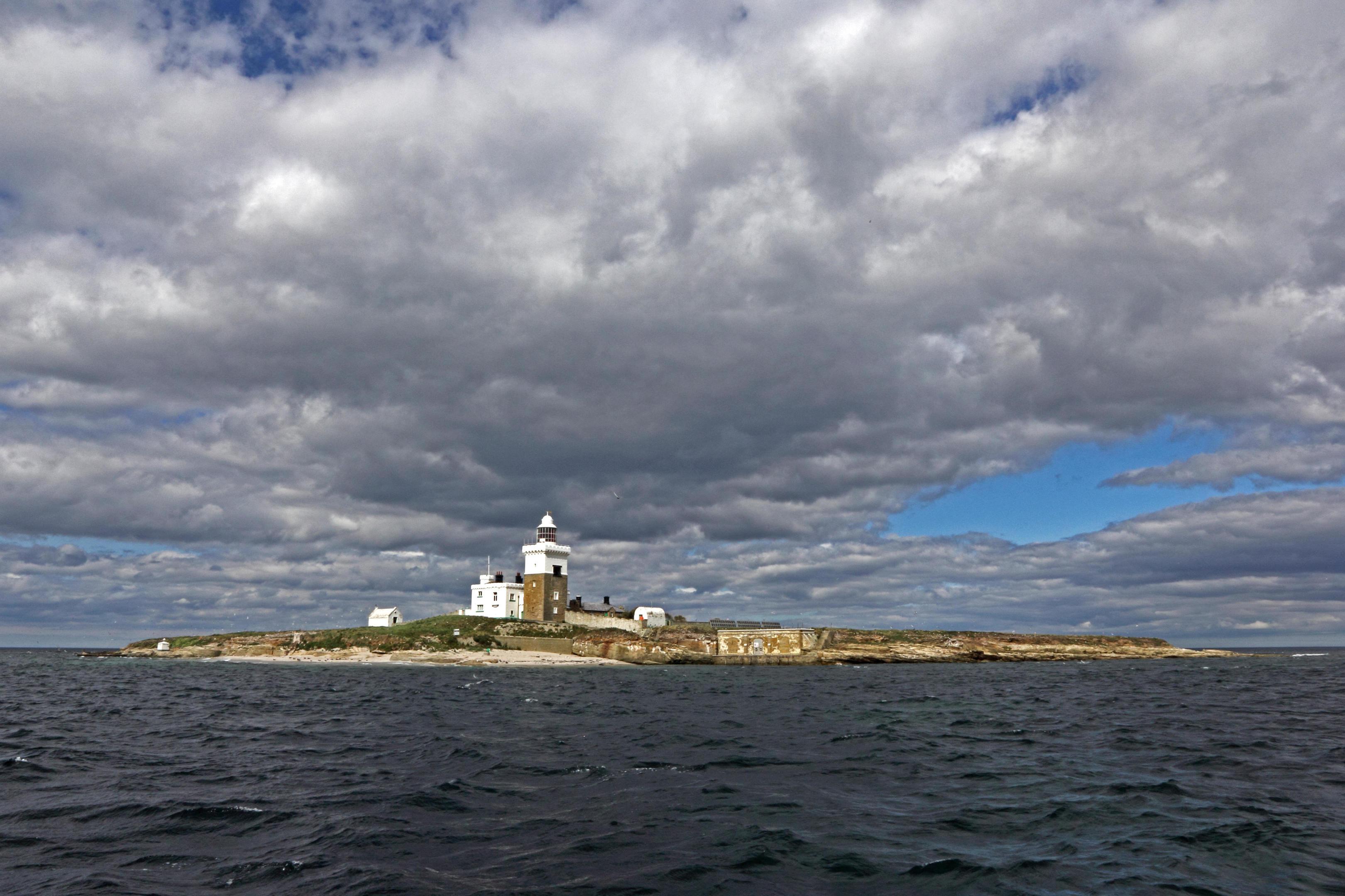 Coquet Island, Amble, Northumberland (Alamy)