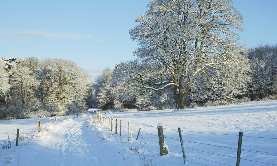 Met Office issues weather warning as snow heads towards London