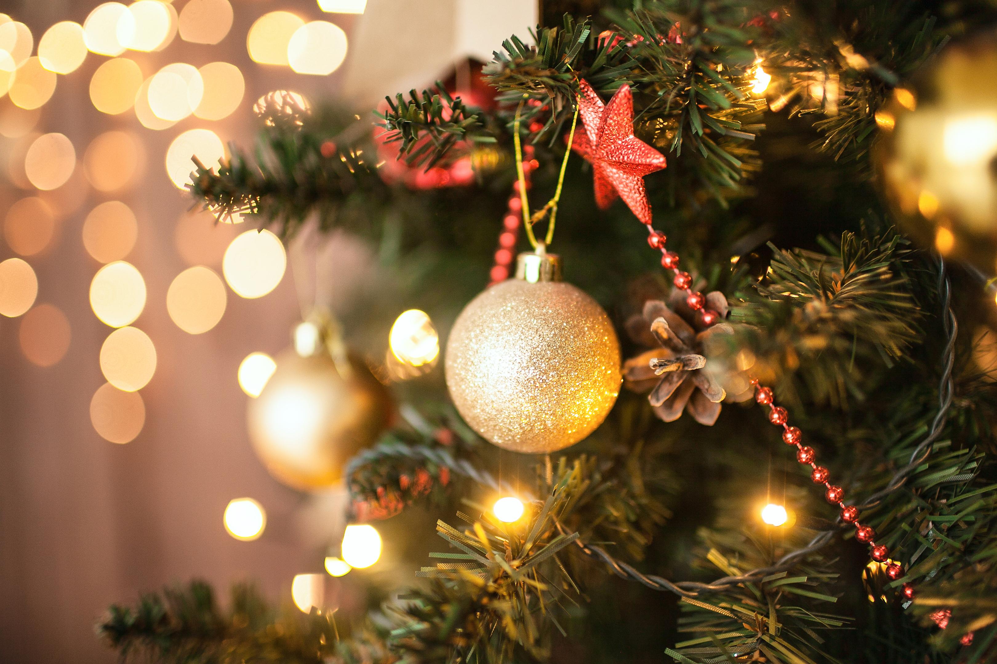 Christmas Trees: Do you buy real or fake? (iStock)