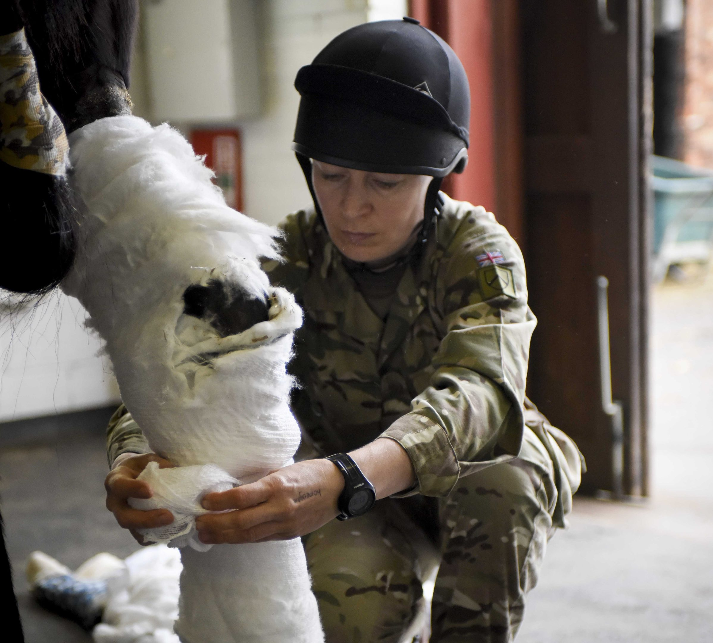 Defence Animal Centre RAMC Melton Mowbery mowbray (pictured) Sgt Kerrie Moore RAVC