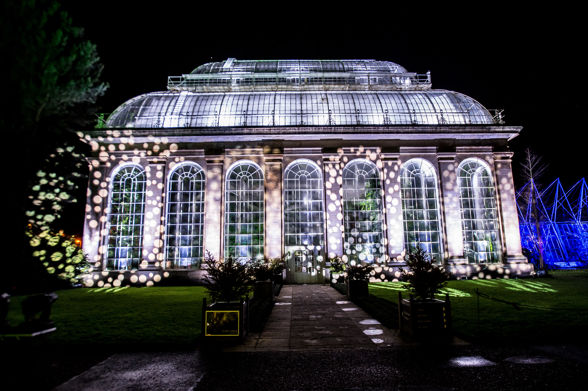 Christmas at the Botanics, Edinburgh (Wullie Marr Photography)