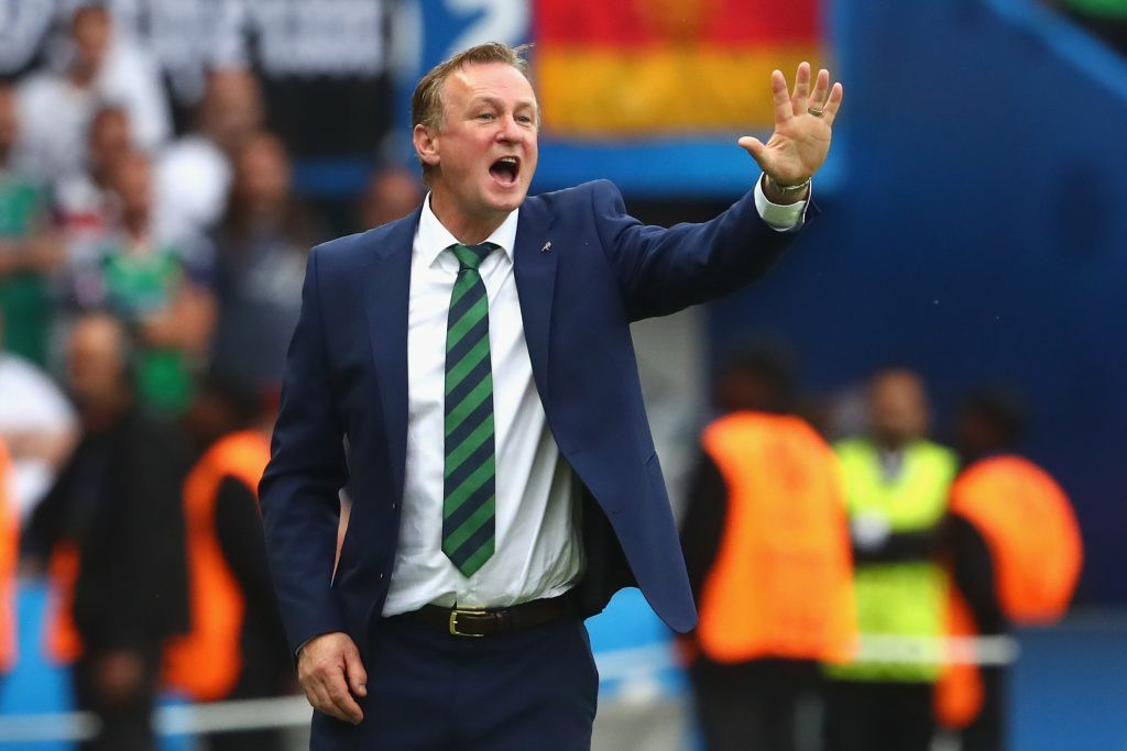 Michael O'Neill (Alexander Hassenstein/Getty Images)