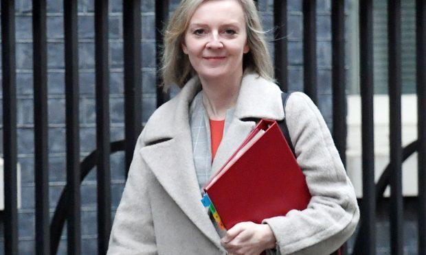 Chief Secretary to the Treasury Liz Truss (Stefan Rousseau/PA Wire)