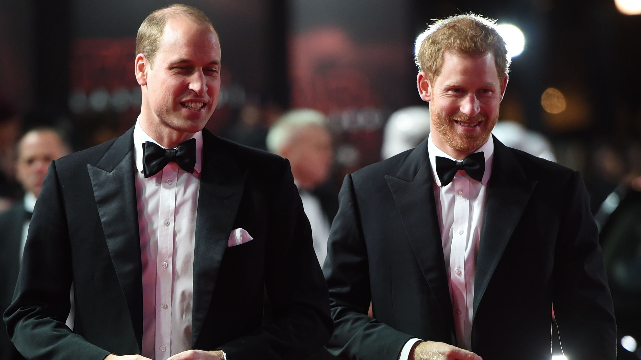 Prince Harry and Prince William (Eddie Mulholland/Daily Telegraph/PA)