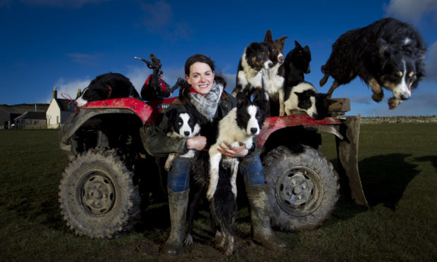 Lisa Gast, who breeds and trains sheepdogs, and puppy sheepdogs on the Isle of Bute. (Andrew Cawley)