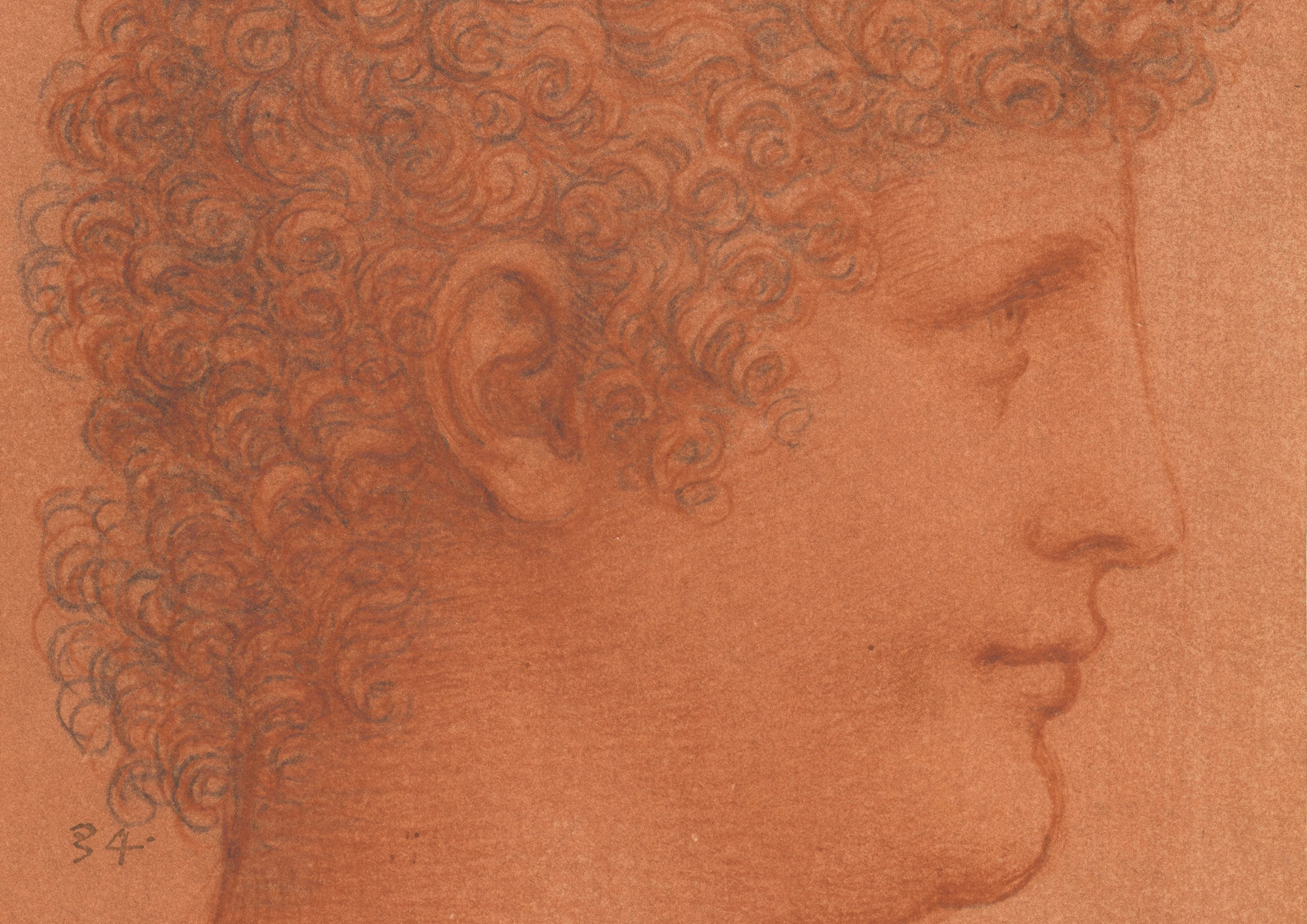The head of a youth, c.1510, one of almost 150 drawings by Leonardo da Vinci will go on display (Royal Collection Trust/PA Wire)