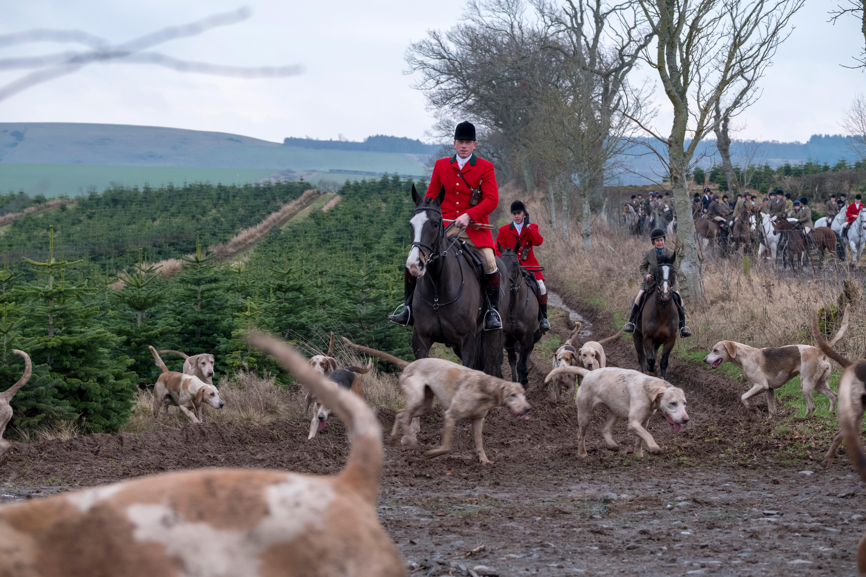 Huntsman Tim Allen with the Duke of Buccleuch's Hunt Foxhounds (Rob Gray/Alamy Live News)