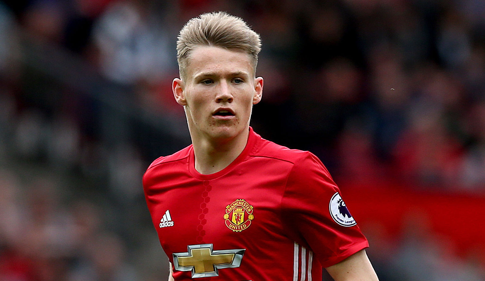 Image result for mctominay