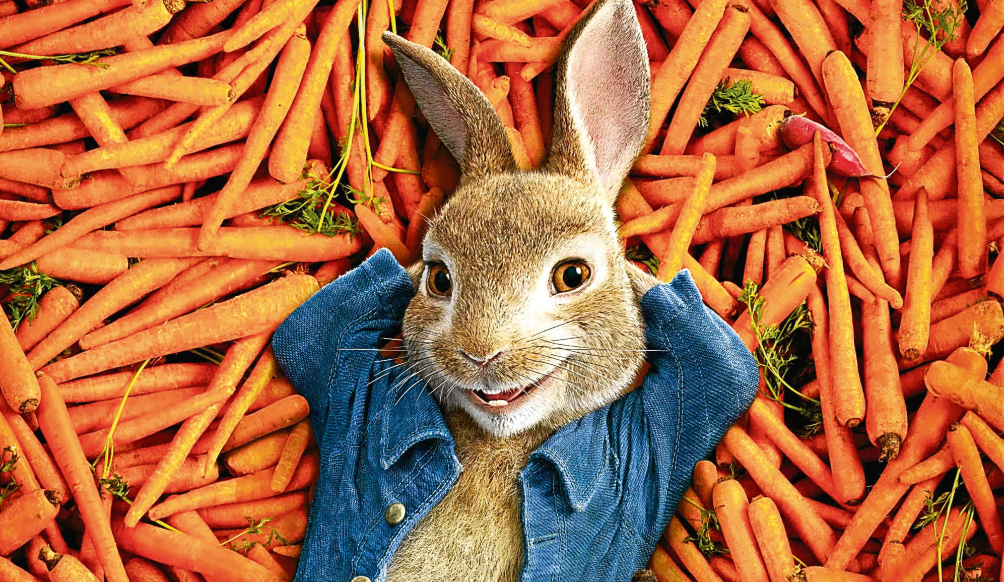 The Beatrix Potter Estate refused many offers for Peter Rabbit to become a film star (Allstar/SONY PICTURES ANIMATION)