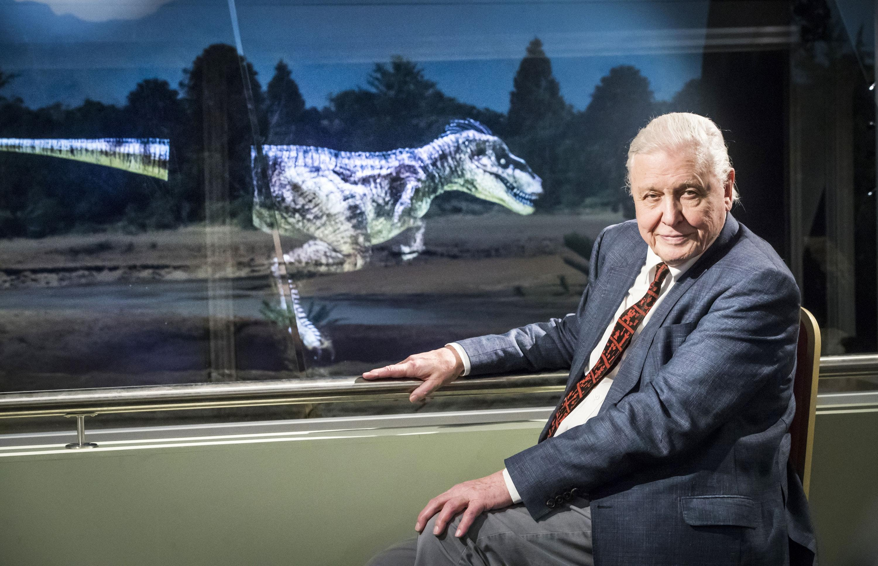 Sir David Attenborough as he officially opens Yorkshire's Jurassic World at the Yorkshire Museum in York (Danny Lawson/PA)