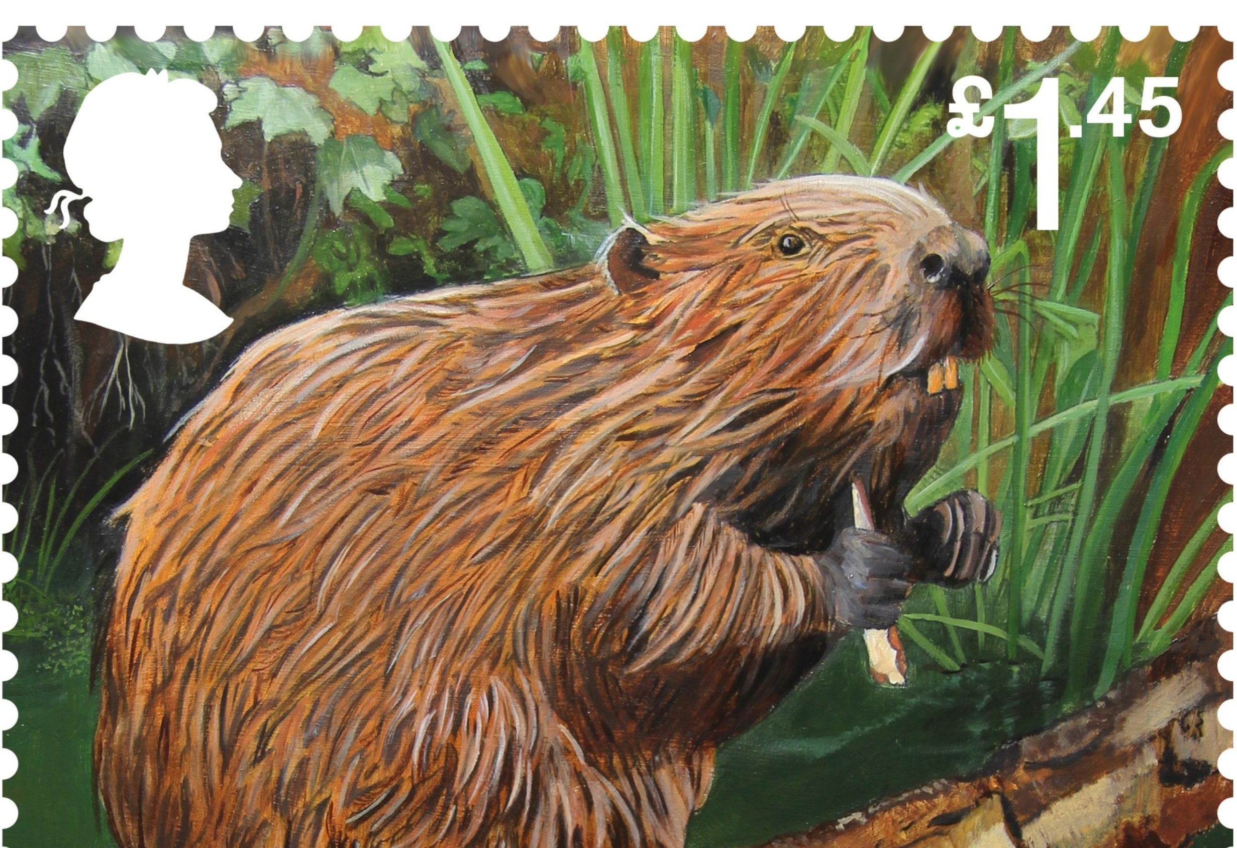 A stamp illustrated with a Eurasian Beaver (Royal Mail Group/Tanya Achilleos Lock/PA Wire)