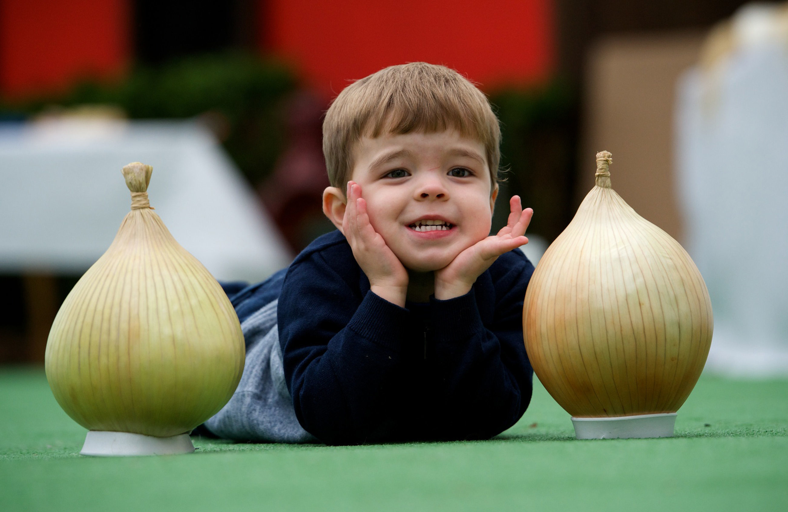 Youngster Ethan Hainey, from Inchinnan, in Renfrewshire knows his onions