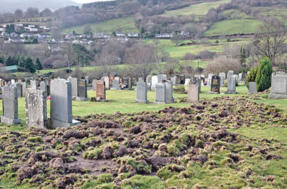 Previous damage to Lamlash Cemetery caused by badgers. (The Arran Banner)