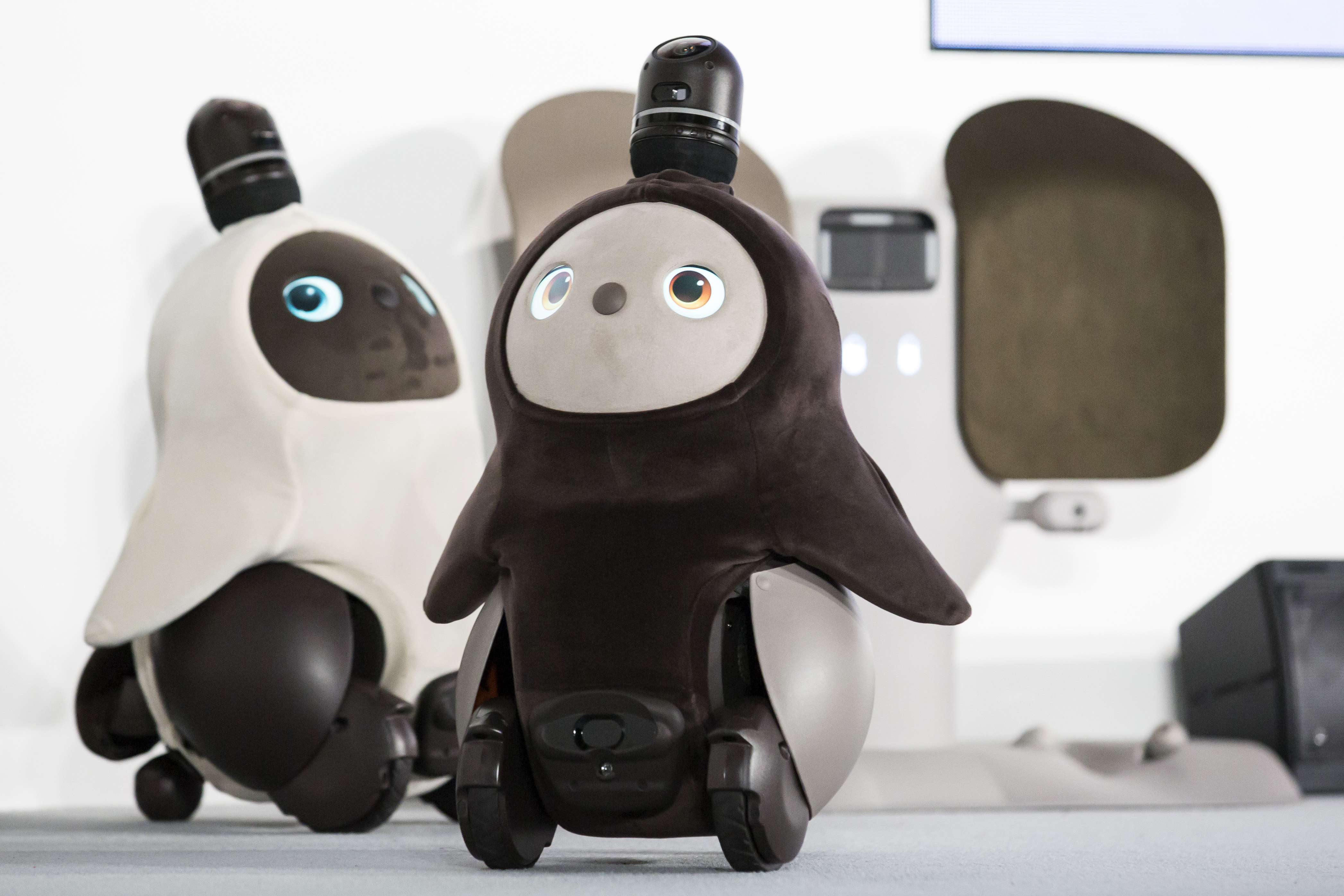 Pet robots developed in Japan (Tomohiro Ohsumi/Getty Images)