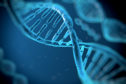 Keeping DNA has rights implications