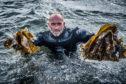 Seaweed forager Lewis Mackenzie