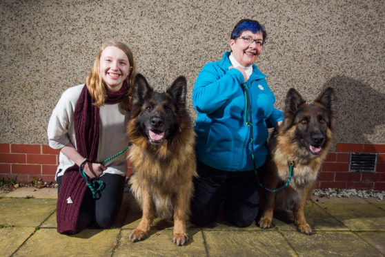 Aine Bidgood, left, and gran Doreen with German Shepherds Oscar and Kai