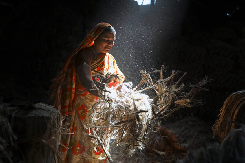 A women works in a jute-processing mill in the Narayanganj region of Bangladesh. The process involves extracting fibres from bast fibre plants