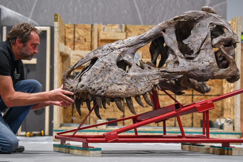 Remmert Schouten from of Naturalis Biodiversity Center unpacks Trix last week