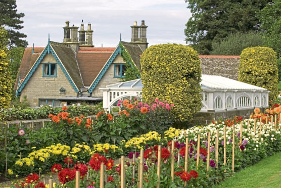 Victorian splashes of colour in Cragside gardens, Northumberland