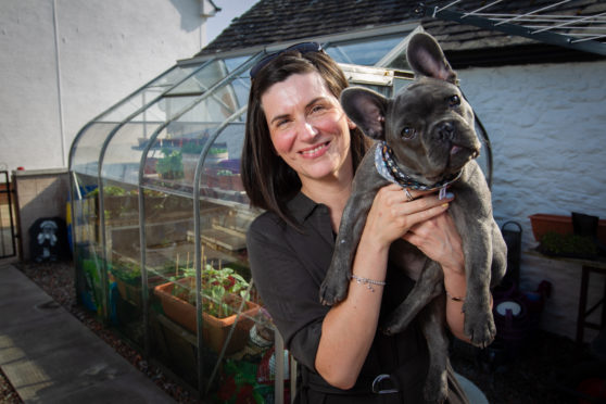 Louis the French Bulldog with owner Claire Halliday